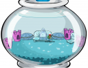 igloo-contest.png